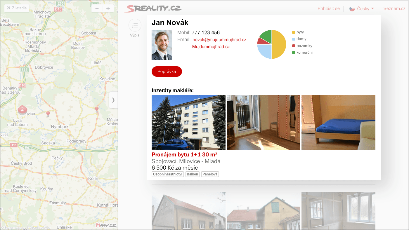 Example of agent profile.